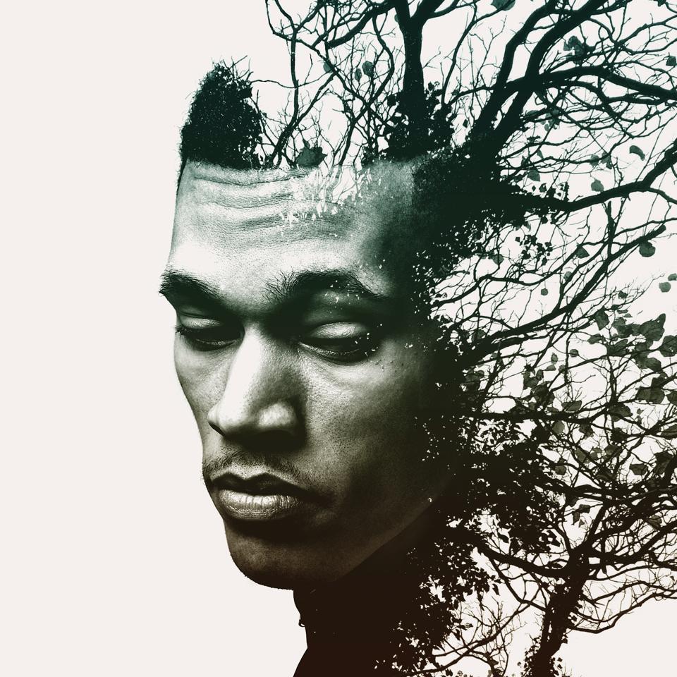 Trip Lee - Rise (Album Cover)